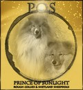Prince Of Sunlight kennel